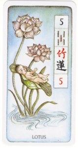 5-bamboo-lotus