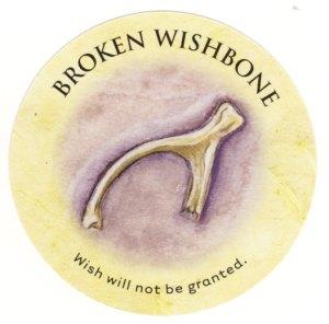 Broken Wishbone