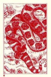 Red 8 Serpent