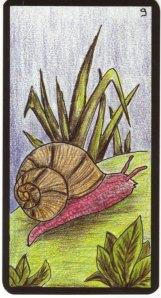 9 snail